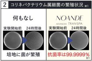 ノアンデ・コリネバクテリウムの実験