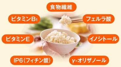 ファンケル発芽米.・栄養素
